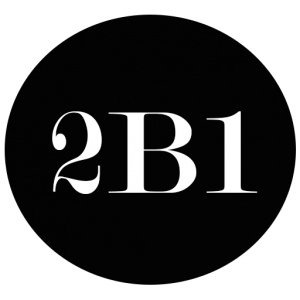 2B1 International Consulting